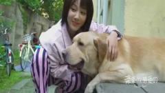 《亲爱的热爱的》花絮:杨紫对狗唱歌?这相处