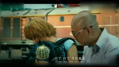 泰囧:仙人掌种寺庙变健康树?王宝强你真是徐