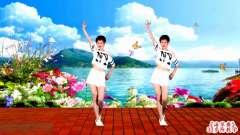 调皮广场舞《海草舞》33步 简单好看 动作搞笑