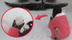 搞笑视频:说好的开心打雪仗,你却偷偷给雪球