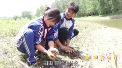 童年趣事:田田和狗蛋去小河边玩泥巴,没想被